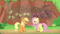 Fluttershy -last time they all argued- S8E23