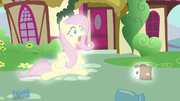 Fluttershy and Angel switch places S9E18