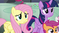 Fluttershy worried S6E7.png