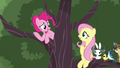 """Pinkie """"There's still other things"""" S5E11.png"""