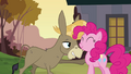 "Pinkie Pie and Cranky ""of course we're friends"" S02E18.png"