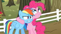 Pinkie Pie talking to Rainbow Dash about the cider S2E15
