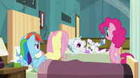 Ponies looking at Rainbow's roommate S2E16