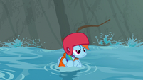 Rainbow Dash floating down the stream S8E9