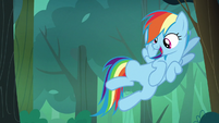 Rainbow Dash spots a berry bush S7E16