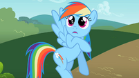 Rainbow Dash thank you S2E8