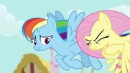 S06E11 Fluttershy stara się nie denerwować