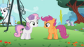 Scootaloo and Sweetie Belle S2E06.png