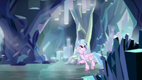 Silverstream exploring the caves S8E22