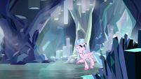Silverstream exploring the caves S8E22