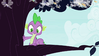 Spike climbs onto tree branch S4E16