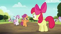 Sweetie Belle and Scootaloo walking towards Apple Bloom S5E17