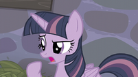 Twilight -And I don't remember any of them being a staff- S5E02