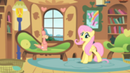201px-Fluttershy taking care of Philomena S01E22