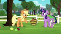 Applejack --Pinkie Pie says it's Rarity's fault-- S6E22