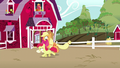 Applejack and Apple Bloom having fun together S5E17.png