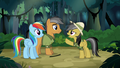 "Daring Do ""other side of the temple"" S6E13.png"