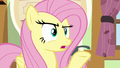 """Fluttershy """"I don't think they meant here"""" S6E11.png"""