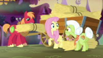 Fluttershy -I forgot to stock up on food for Angel- S5E21