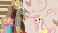 Fluttershy -he'd have a chaise lounge- S7E12