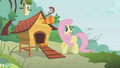 Fluttershy turns around S1E07.png
