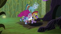 Pinkie Pie bumps Twilight into the hole S5E21