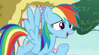 "Rainbow ""looking up to anypony else"" S8E20"