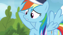 Rainbow Dash --her wing was under his-- S6E24