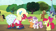 S05E17 Orchard Blossm patrzy na Sweetie Belle i Scootaloo