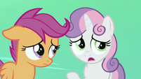 "Sweetie Belle ""it's all our fault"" S8E6"