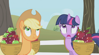 Twilight and Applejack looking up S1E03