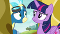 Twilight and Misty Fly look at each other S6E24.png