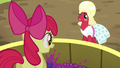 Apple Bloom squishing grapes S5E17.png