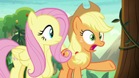 Applejack -apple blossom on snowfall- S8E23