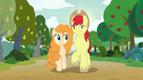 Bright Mac and Pear Butter walking in summer S7E13
