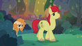 Bright Mac leads Pear Butter to edge of apple farm S7E13.png