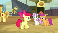 Crusaders excited about getting their cutie marks S5E6