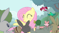 Fluttershy blushing S4E14.png