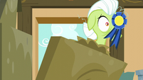 Granny Smith about to fall down a ribbon on her eye S5E17