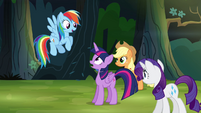 Rainbow Dash -I spotted the house- S4E04