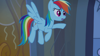 Rainbow Dash -why weren't you scared-- S4E03