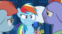 Rainbow Dash venting her frustration S7E7