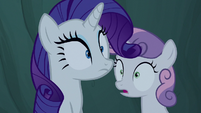 Rarity and Sweetie notice the campfire go out S7E16