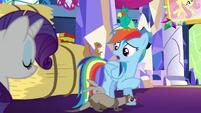 S05E03 Rainbow ''zachwyca się'' zwierzętami Fluttershy