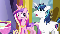 "Shining Armor ""did I say that already?"" S7E3"