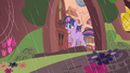 Twilight calls Rarity & Applejack S01E08.png