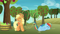 Applejack catches Rainbow with her lasso S8E5