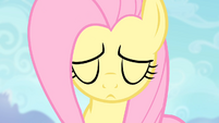 Fluttershy about to do the Stare S4E07