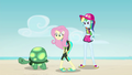 Fluttershy and Rainbow standing over Tank EGDS14.png