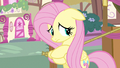 Fluttershy know anything S3E13.png